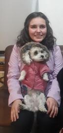 Pelusa Invernal #Navidad Oh My Pet!