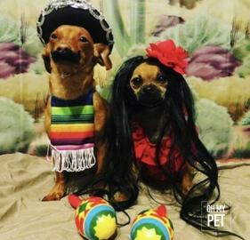 Maria y pedrito #OhMyPet